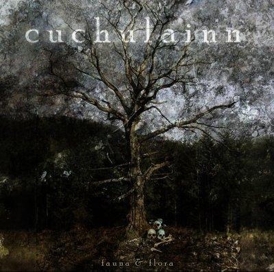 Cuchulainn